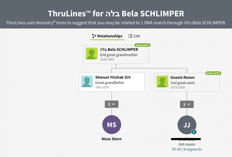 MyHeritage vs AncestryDNA - Ancestry Thru Lines