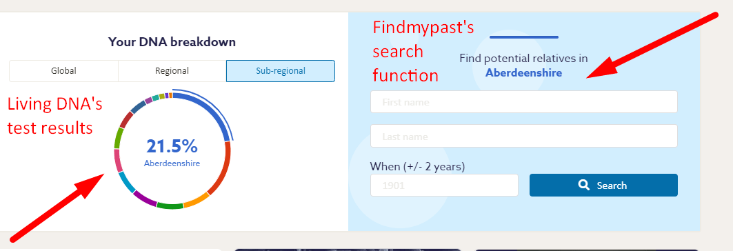 Findmypast review
