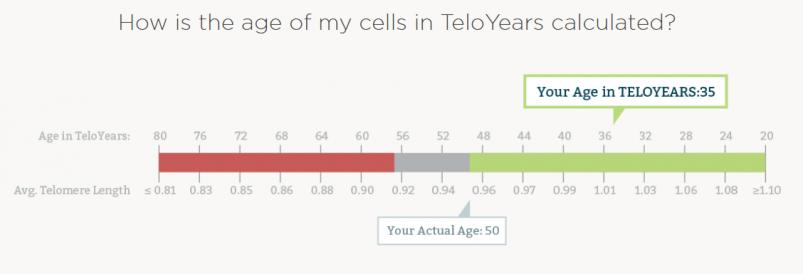TeloYears Review