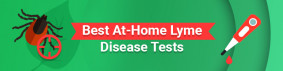Best At-Home Lyme Disease Tests in 2021 - Fast & Trustworthy