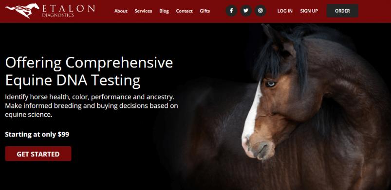 Etalon Diagnostics Homepage – Comprehensive Equine DNA Testing
