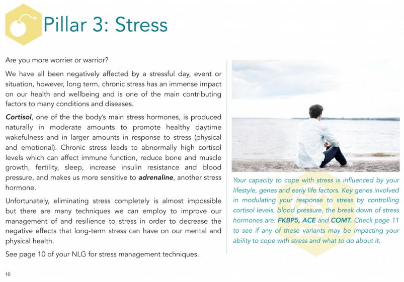 Vitagen DNA Report Stress Overview