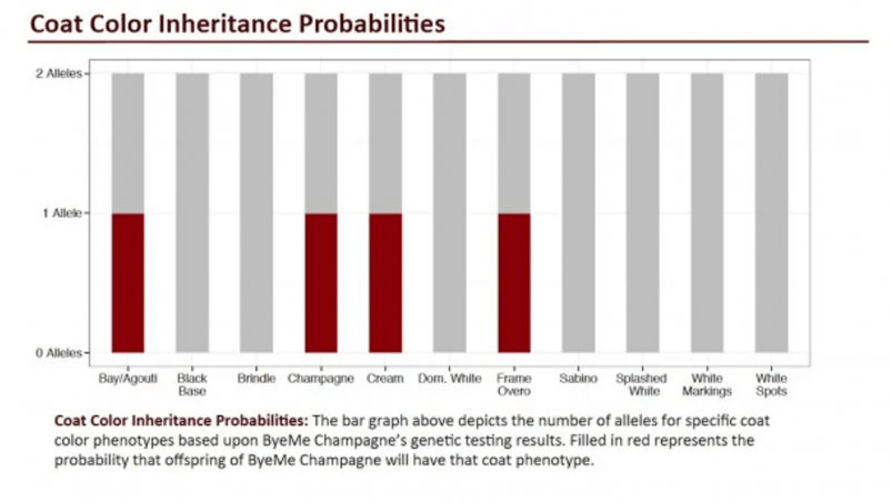 Etalon Diagnostics – Coat Color Inheritance Probabilities Report