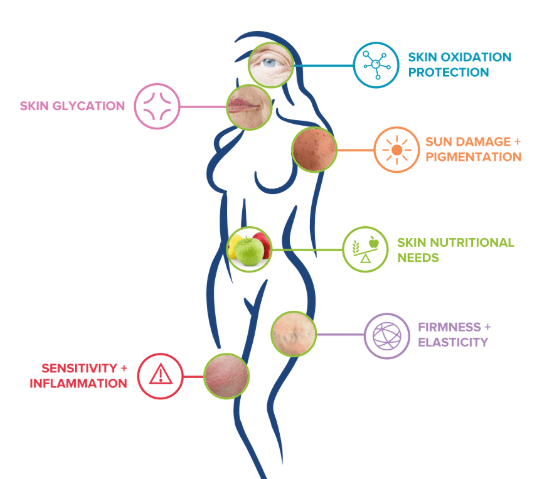 Caligenix Skin Care Report Categories