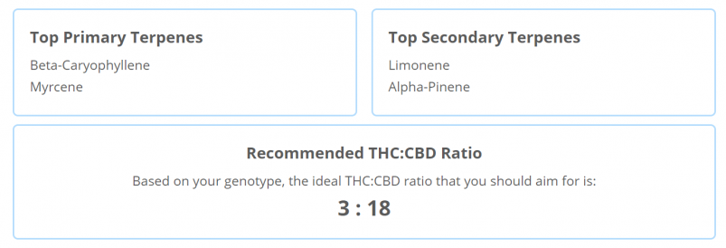 Strain Genie's cannabis health report includes a list of recommended terpenes as well as a THC:CBD ratio