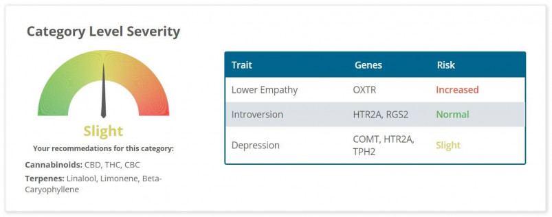 The mood/personality section of Strain Genie's cannabis health report looks at your risk for things like introversion and depression