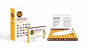 What kind of information can a pet owner expect to receive after doing a dog DNA test?