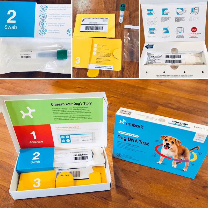 Example of Embark Dog DNA Test Kit including contents.