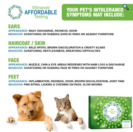 5 strands pet intolerance symptoms card