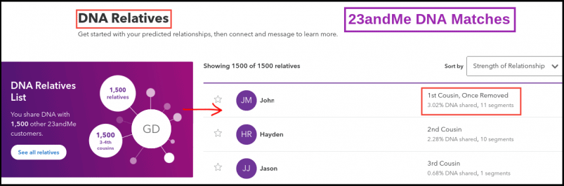23andMe DNA Matches Summary