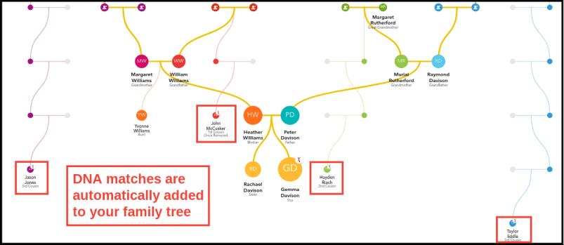 23andMe Family Tree