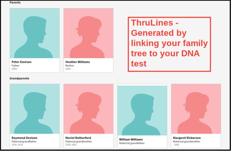 AncestryDNA ThruLines