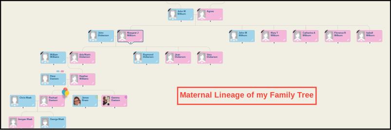 MyHeritage Family Tree Family View