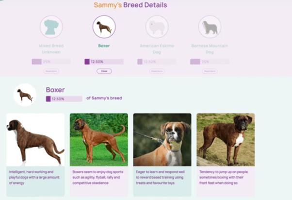 Orivet Breed Descriptions