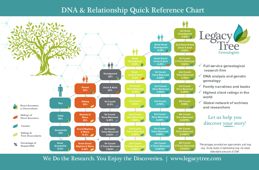 Legacy-Tree-Genealogists-DNA-Relationship-Chart